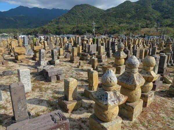 Kyodobochi